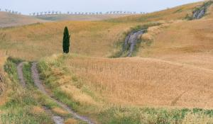 Tuscany photo locations - Curvy Tuscan Road
