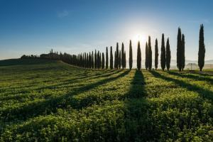 photo spots in Tuscany - Poggio Covili