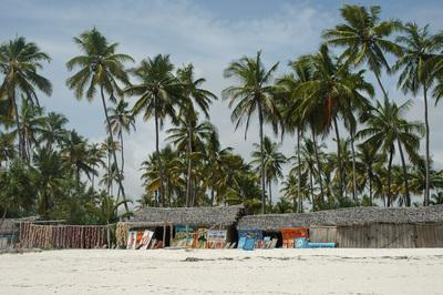 pictures of Zanzibar Island - Kiwengwa Beach and Around