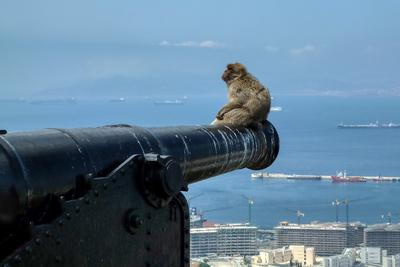 images of Gibraltar - Military Heritage Centre - Promontory