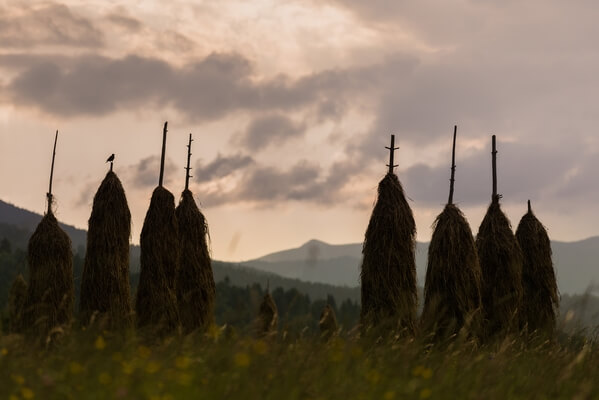 Haystacks (Ostrnice) at Podgora