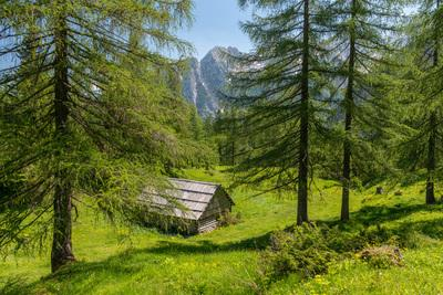 images of Triglav National Park - Shepherd's Hut at Vršič Road