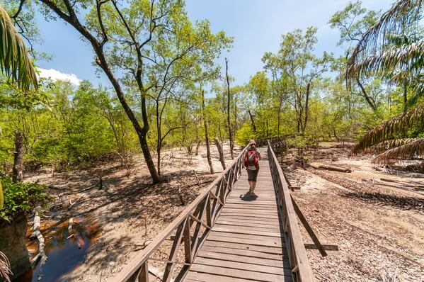 Hiking in Bako National Park