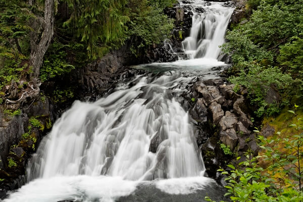 Cascades on the Paradise River