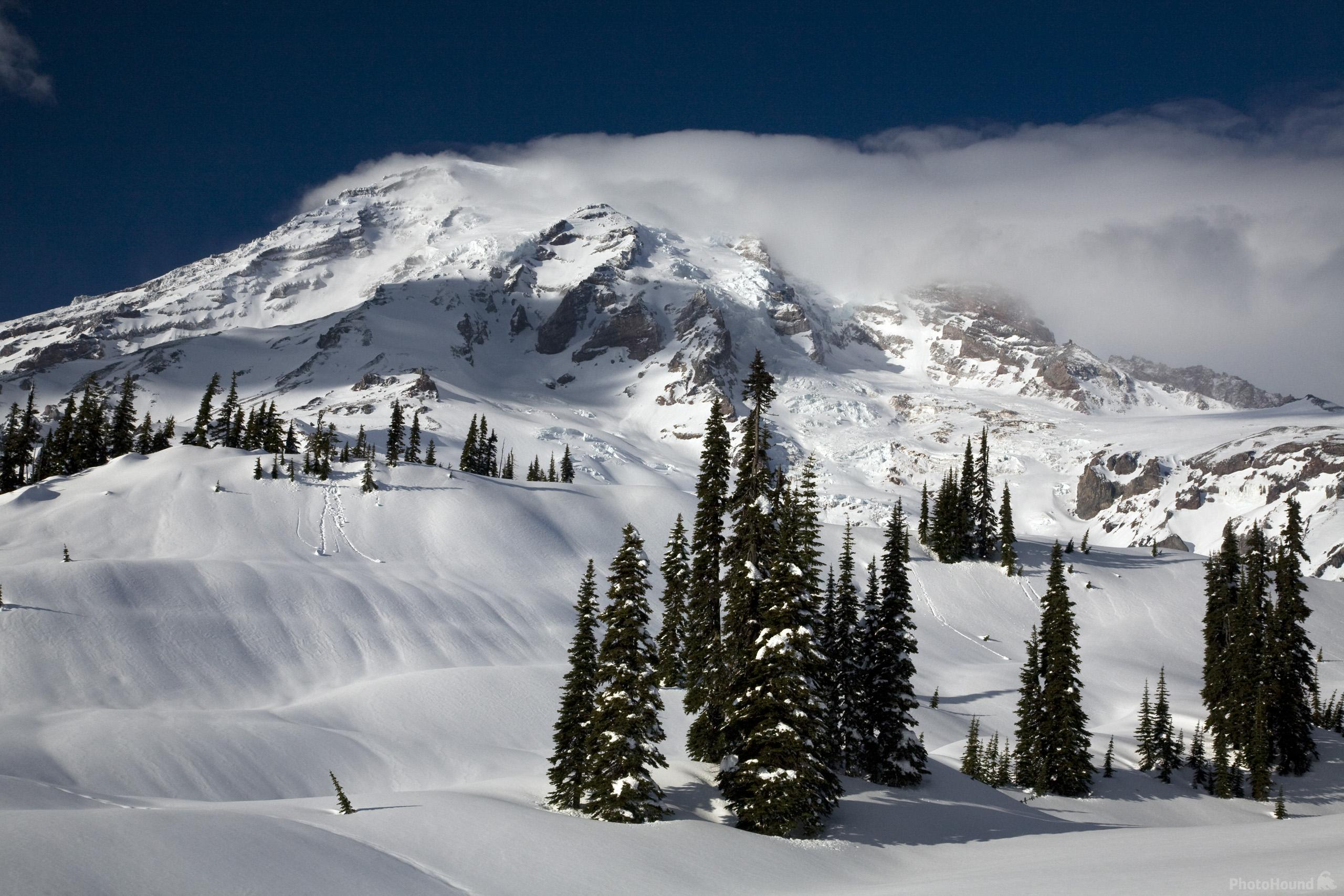 Snow covered meadows at Paradise