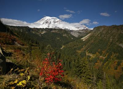 Packwood instagram spots - Stevens Canyon Bend Viewpoint, Mount Rainier National Park