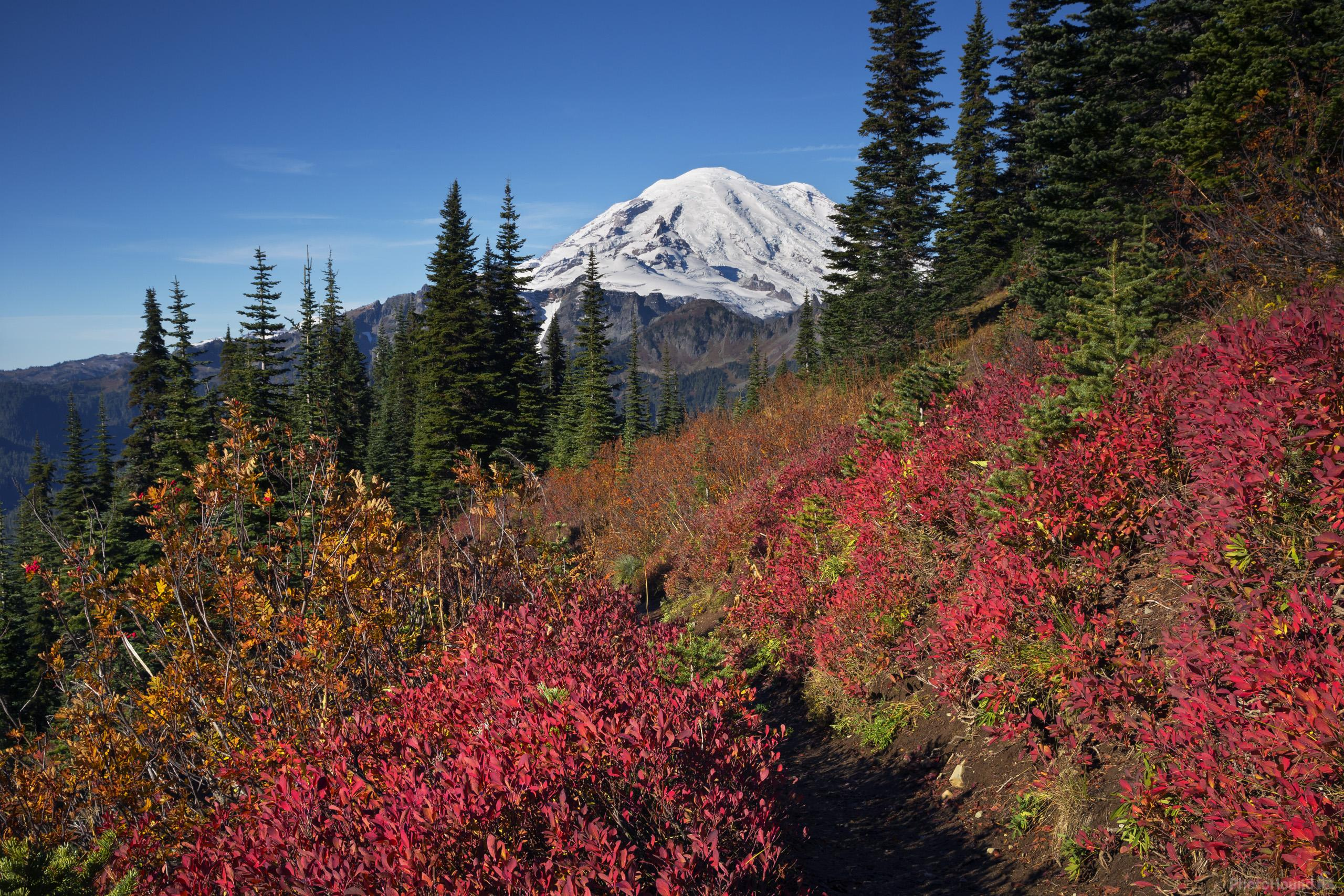 Fall color along trail around Naches Peak