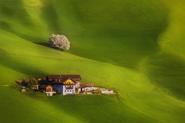 Val di Funes - Green Meadows