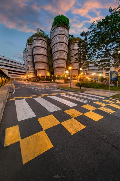 photo spots in Singapore - The Hive - Exterior