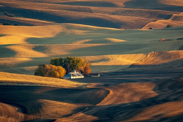 Instagram spots in Palouse