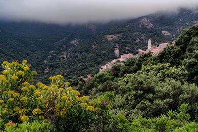 photos of Corsica - Palasca - view from the road