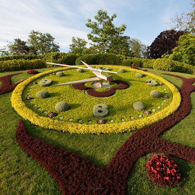 photo locations in Geneve - Floral Clock
