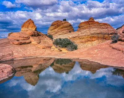 images of Coyote Buttes North & The Wave - Coyote Buttes North - Brainrocks & Waterpools