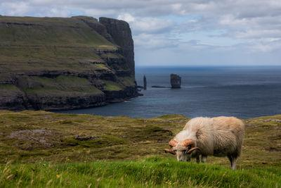 photos of Faroe Islands - Risin & Kellingin view