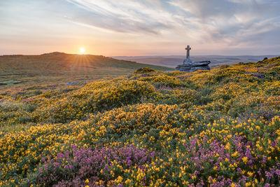 Cave Penny Cross on a summer sunset with the gorse and heather in flower.