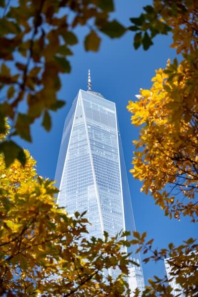 One WTC captured during the autumn with colorful leaves as a frame