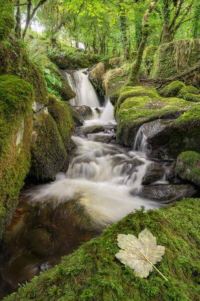 England photography locations - Colly Brook Waterfalls