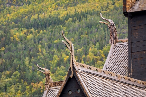 Dragons on the roof