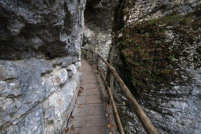 images of Triglav National Park - Pokljuka Gorge