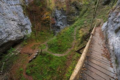 pictures of Triglav National Park - Pokljuka Gorge