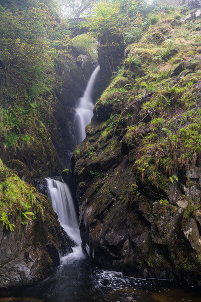 Double cascade of Aira Force