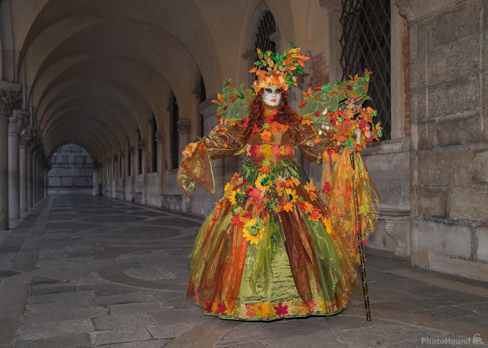 Image of Carnevale di Venezia by Mikki Young