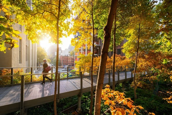 Early morning autumnal shot of High Line.