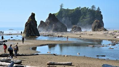 images of Olympic National Park - Ruby Beach