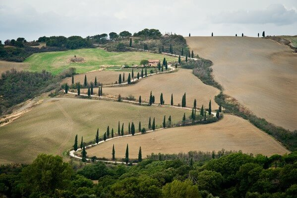 Winding road as viewed from La Foce