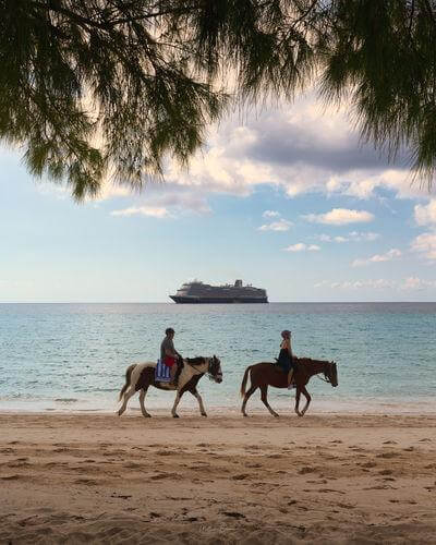 pictures of The Bahamas - Half Moon Cay - Pegasus Ranch