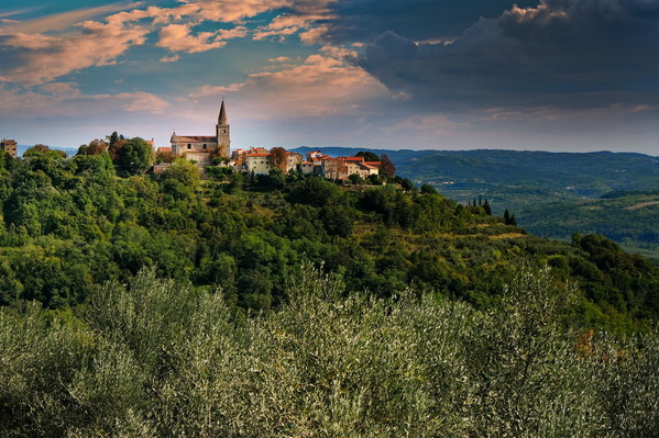 On our way from Motovun, we stopped to take this photo of the town from afar.