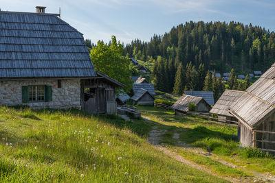 pictures of Triglav National Park - Planina Zajamniki