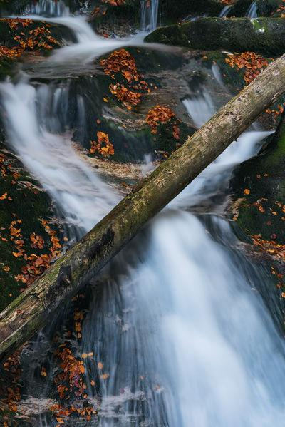 pictures of Lakes Bled & Bohinj - Voje Valley & Waterfall