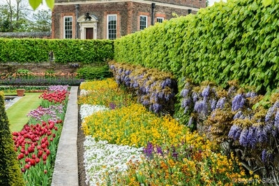 pictures of London - Hampton Court Palace
