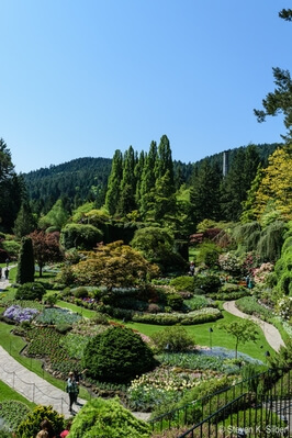 British Columbia photography spots - Butchart Gardens