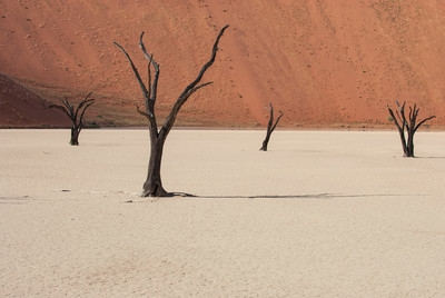 images of Sossusvlei - Deadvlei General Info