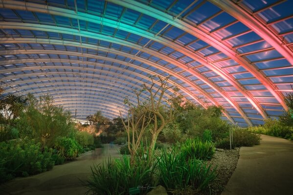 The Great Glasshouse at blue hour