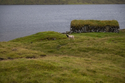 photos of Faroe Islands - Fishearmans turf houses
