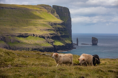 pictures of Faroe Islands - Risin & Kellingin view