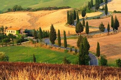 photo spots in Tuscany - Monticchiello winding road