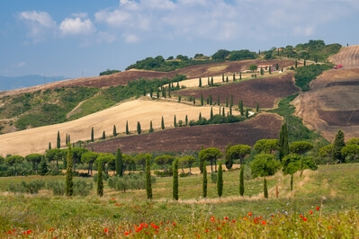 photography spots in Tuscany - Winding road from the parking by La Foce