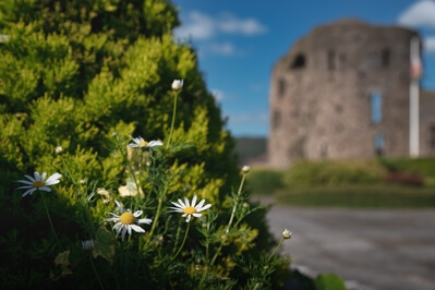 pictures of South Wales - Neath Castle