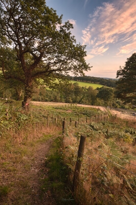 images of South Wales - View from Tonna Bridleway