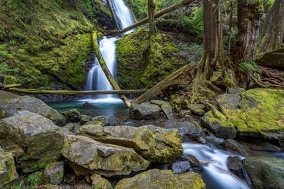 photos of Olympic National Park - Murhut Falls