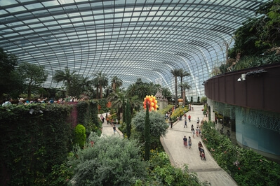 Singapore photo locations - Flower Dome