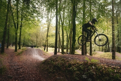 photos of South Wales - Afan Forest Bike Park (Bryn Bettws Lodge)
