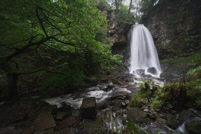 photos of South Wales - Melincourt Falls