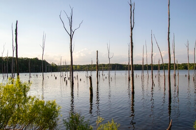 New Jersey photo locations - Manasquan Reservoir