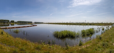 Panoramic view of the newly created wet lands