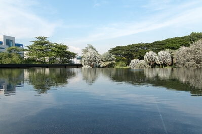 Singapore photo guide - HortPark